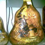 Kan du drikke det? Kobra & skorpion i Laos