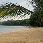 Hvordan finder man de billigste hoteller i Thailand
