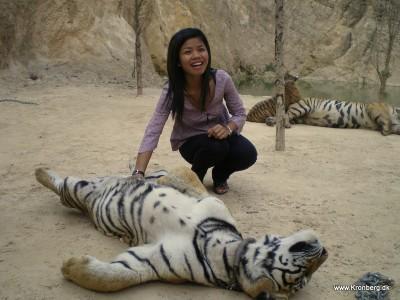 Tigertemplet i River Kwai